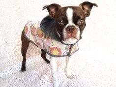 Custom hooded dog raincoat by AdonisMommy on Etsy, $59.95