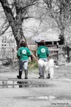 4-H picture I took of our girls.
