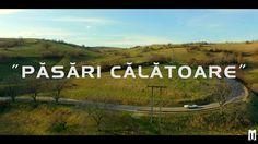 Marius Moga feat. Achi - Suntem Pasari Calatoare | Videoclip Oficial