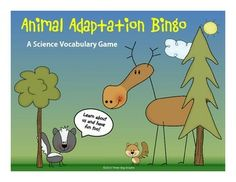 This printable animal adaptations bingo game includes 16 vocabulary words that match most state's science standards. Students write the vocabulary words in random order on their bingo form. Clue cards with definitions are included along with complete instructions. Great for review before assessment. FREE
