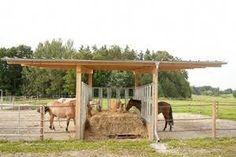 horse farm ideas / horse farms ` horse farm layout ` horse farm ideas ` horse farm layout with house ` horse farm wedding ` horse farm logo ` horse farm signs ` horse farm landscaping Paddock Trail, Horse Paddock, Horse Stables, Horse Farms, Hay Feeder For Horses, Horse Feeder, Horse Shed, Horse Barn Plans, Horse Shelter