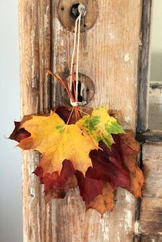 Sweet fall decor at the cabin! Use some embroidery floss, ripped or colored rapier hang them around your room on door knobs.....