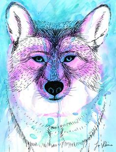 Gemini Coyote - Jo Klima - Maps to Herself http://www.mapstoherself.com/messages-from-the-moon/