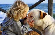 Veri aMICI: Un gesto gentile a un cane e gli effetti sono meravigliosi