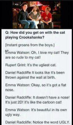 Harry Potter cast interview