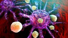 Simple, cheap nanoparticles activate immune system against cancer Arthritis, Learn To Fight, Spring Into Action, Gut Microbiome, Cancer Treatment, Immune System, Simple, Medical, Salud