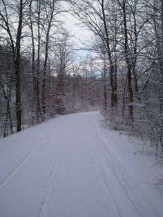 Official Website Of The Keuka Outlet Trail - Administration Dresden, Trail, Website, Outdoor, Outdoor Games, The Great Outdoors, Garden