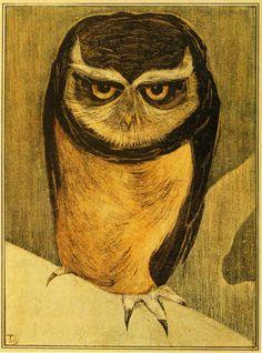 Owl - Theo van Hoytema Pinned by www.myowlbarn.com