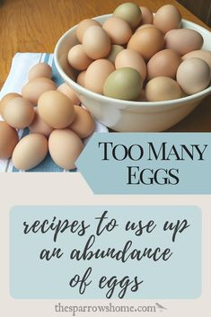 When we had backyard chickens I always had more eggs than I knew what to do with. This is a fantastic collection of recipes for when you have LOTS of EGGS! recipes Recipes That Use Up A Lot of Eggs (Bonus Pudding Recipe! Egg Recipes For Dinner, Recipes Using Egg, Healthy Egg Recipes, Baking Recipes, Recipes For Eggs, Healthy Food, Vegan Recipes, No Egg Desserts, Dessert Recipes