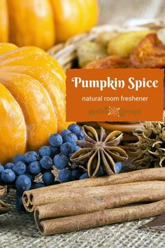 Pumpkin Spice Simmering Spices Natural Air Freshener
