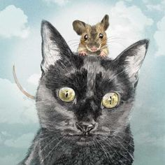 Illustratrice naturaliste & dessin animalier: Félins #4 Le Chat