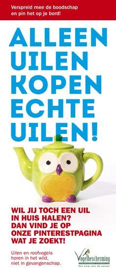 Leer anderen de slogan 'alleen uilen kopen echte uilen' kennen en plaats deze afbeelding op jouw Pinterestpagina.