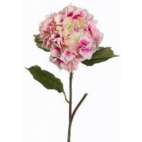 Hydrangea-in-Pink-25-Tall_thumbnail-1.JPG