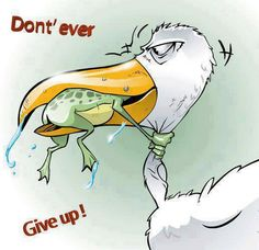 Pappas Agency This is One of Our Mottos!!!  Never Give Up!!!!