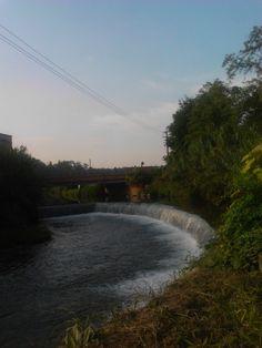 fiume olona ad olgiate olona (va)