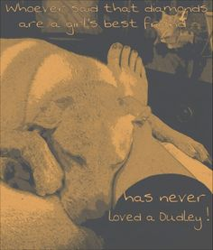 Dudley love