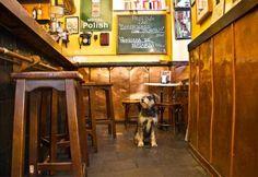 En Madrid puedes ir a bares y restaurantes con tu perro, siempre que el dueño del local lo permita y el can vaya atado (y sepa comportarse). Aquí puedes consultar los detalles de la Ordenanza.
