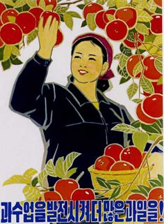 More fruit through the promotion of pomiculture, North Korea