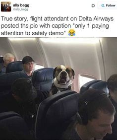 23 Pictures That Are Way Too Real For Flight Attendants