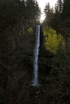 Latourell Falls #Oregon #ColumbiaRiverGorge #LatourellFalls #HikeOregon
