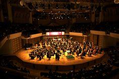 L'Orchestre National des Pays de la Loire (c) les films du réel