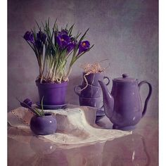 Perfect purple ❤ liked on Polyvore featuring purple, backgrounds and flowers
