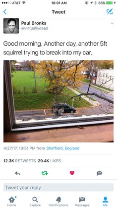 "Wow...didn't know things had gotten that bad in England... ...""Thug Life"" squirrels."