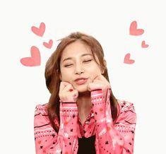 Twice Tzuyu Tofu tofu Twice Tzuyu, Twice Jyp, Nayeon, Kpop Girl Groups, Korean Girl Groups, Kpop Girls, Taekook, Euna Kim, Taehyung