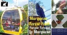 La Marquesa Forest Park: A Treasure Full Of Adventures, Animals And Dinosaurs! http://www.valifante.com/destination/marquesa-forest-park/