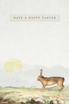 how do html color codes work Easter Bunny Template, Easter Templates, Easter Egg Pattern, Festival Paint, Easter Festival, Easter Illustration, Festival Background, Happy Easter Day, Coloring Easter Eggs