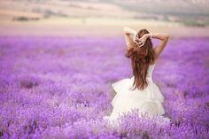 A fields of lavender - love it! www.weddingpoland.com
