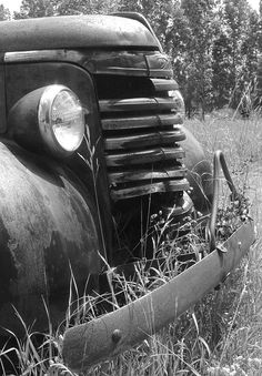 Old GMC spotted in field near Arcadia, MI.