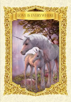 ‎Ask the Unicorns Oracle Cards Angel Guide, Unicorn Pictures, Oracle Tarot, Angels Among Us, Angel Cards, Tarot Cards, Moose Art, Angel Numbers, Divine Light