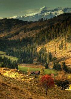 Údolie Čierneho Váhu - Liptovská Teplička Beautiful Places, Beautiful Pictures, Heart Of Europe, Places Around The World, Landscape Photos, Amazing Nature, Beautiful Landscapes, Natural Beauty, Travel Photography