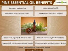 9 Amazing Benefits of Pine Essential Oil | Organic Facts