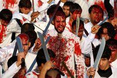 مصرتفتح الباب لزيارة 88 شيعيا للسياحة   جريدة قلب مصر الألكترونية