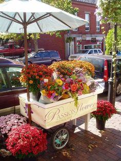 What is a Market Umbrella? Is it Different than a Patio Umbrella? | OutsideModern Flowers For Sale, Fresh Flowers, Beautiful Flowers, Cut Flowers, Flower Truck, Flower Cart, Garden Cart, Garden Shop, Flower Stands
