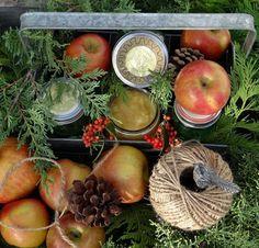 ...a quiet life...: garden advent nov 29th~