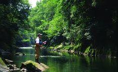 """Résultat de recherche d'images pour """"rivière"""" Images, Paisajes, Search"""