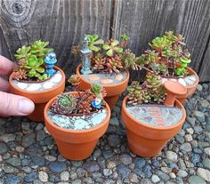 Some cool ideas on How to Create a Miniature Garden #gardening #garden #gardens #DIY #landscaping #home #horticulture #flowers #gardenchat #roses #nature