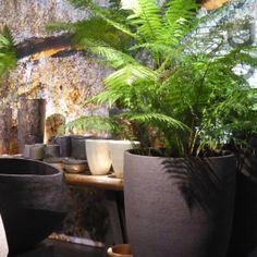The trend for oversized pots and ferns at Maison Objet 2016. Natasha Marshall Blog