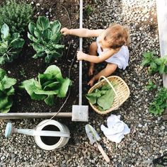 Teach children to love the earth and to know where their food comes from ! #montessori