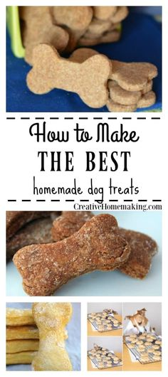Recipes for the best homemade dog treats made with peanut butter chicken oatmeal and more. Recipes for the best homemade dog treats made with peanut butter chicken oatmeal and more. Puppy Treats, Diy Dog Treats, Healthy Dog Treats, Pumpkin Dog Treats, Gourmet Dog Treats, Dog Biscuit Recipes, Dog Treat Recipes, Dog Food Recipes, Recipe For Peanut Butter Dog Treats