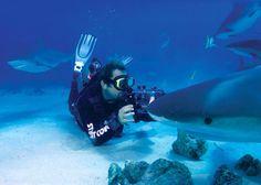Scuba diver with sharks in Turks and Caicos!    http://www.wherewhenhow.com/turks-caicos-islands/magazine/scuba-diving/scuba-diver-photographing-sharks-5.jpg