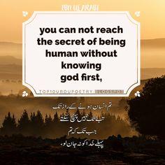 Urdu Quotes, Imam Ali Quotes, Ibn Arabi, Phrases, The Secret, Messages, Text Posts, Text Conversations