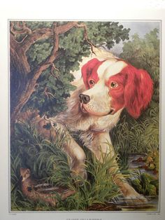 Book Illustration from The Great Book of Currier and Ives America Red Dog | eBay
