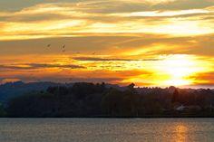 Sunset Ørnsø, Silkeborg