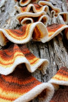 Bromeleighad: Knitting and Nature: 52 forms of fungi Knitter/artist creates 52 different forms of fungi and photographs them. Wool and Textiles Sculpture Textile, Art Textile, Knitting Projects, Crochet Projects, Knitting Patterns, Knit Art, Crochet Art, Freeform Crochet, Yarn Bombing
