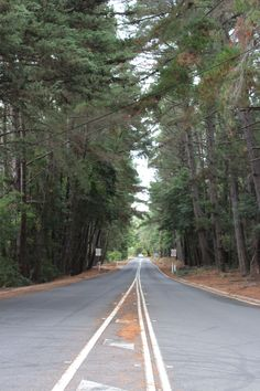Symmetry- ISO 200, f/5.6, 1/30 This was taken at Merricks in Victoria of a road where the trees look exactly the same up both sides of the road. Tripod used to steady camera.