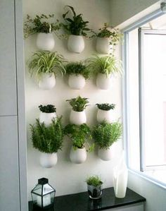 Herb wall garden ideas hanging fun and easy indoor outdoor design small storage g . indoor wall herb garden view in gallery ideas planters mounted . Apartment Herb Gardens, House Gardens, Culture D'herbes, Herb Wall, Kitchen Herbs, Plants In Kitchen, Kitchen Brick, Green Kitchen, Kitchen Ideas